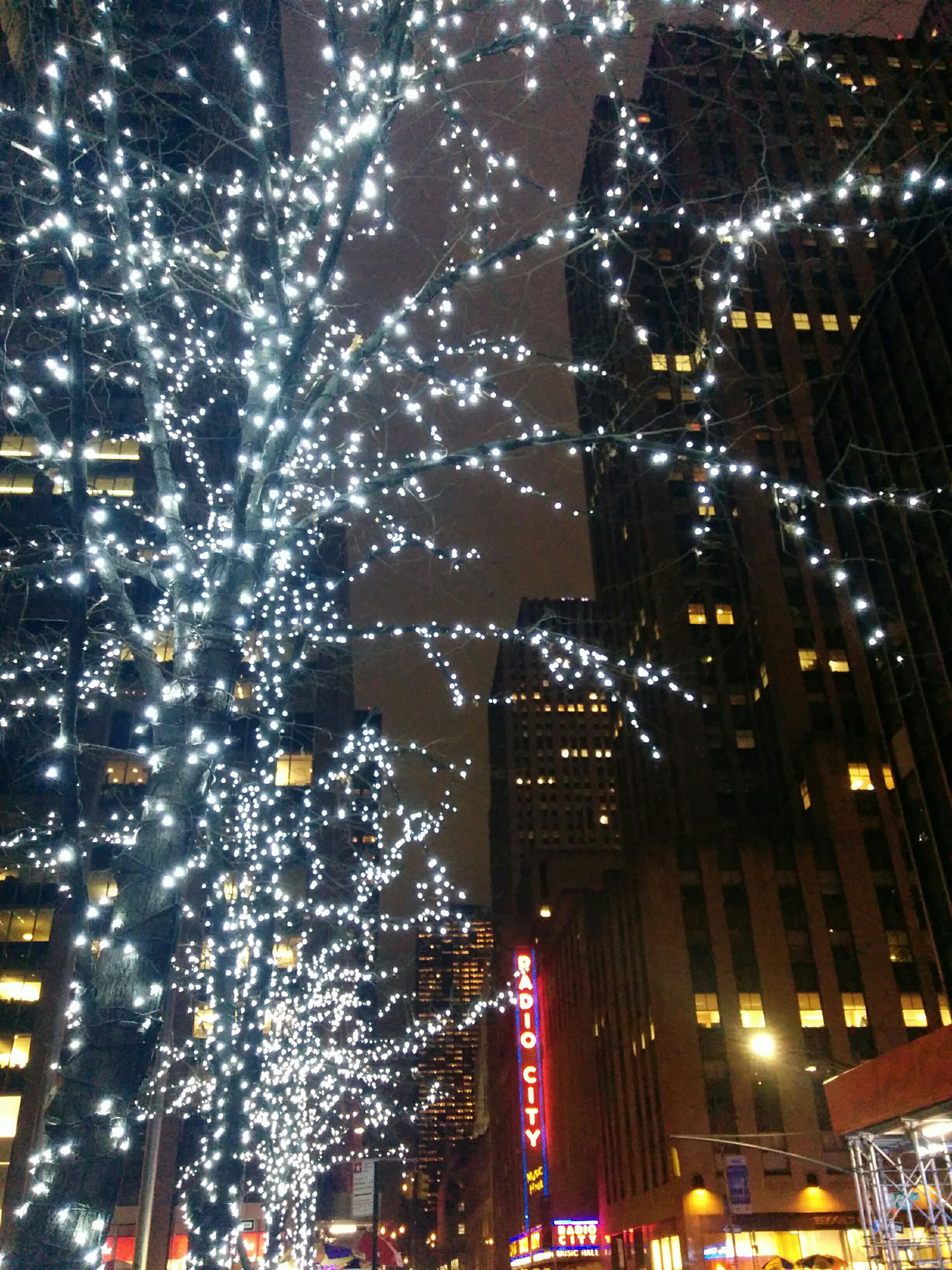 Lights on Tree by Radio City Music Hall
